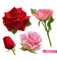 red and pink roses 3d realistic set vector image