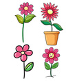 set four pink flowers on a white background vector image