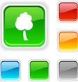 tree button vector image vector image