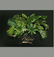 banner with green tropical leaves on green vector image vector image