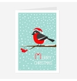 Bullfinch winter red feather bird sitting on rowan vector image vector image