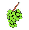 green grape branch icon cartoon vector image