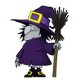 old witch in a hat and with a magic broom vector image