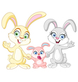 bunnies family vector image
