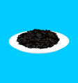 black rice cereal in plate isolated healthy food vector image