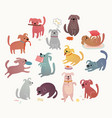 cute dogs set funny characters vector image