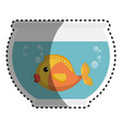 fish in aquarium pet vector image vector image