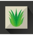 nature leaf green ecology botany vector image