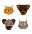 a set of dog cat faces in flat style vector image vector image