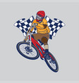 downhill mountain bike championship vector image vector image