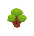 flat cartoon urban park tree vector image vector image