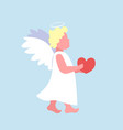 little valentines angel cupid holding red heart vector image