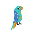 macaw parrot tropical bird with colored feathers vector image vector image