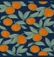 mandarin fruit on night blue background pattern vector image