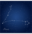 Pisces constellation vector image vector image