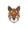 red fox polygonal head wild animal vector image