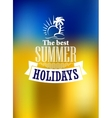 Summer holidays poster vector image