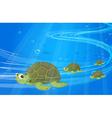 Turtles under the sea vector image vector image