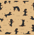 yoga dogs poses and exercises dachshund seamless vector image