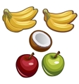 Bananas coconut and apples on white background vector image vector image