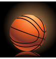 basketball on black vector image