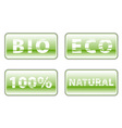bio buttons on the white vector image vector image