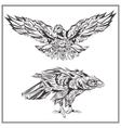 Birds Eagles vintage style vector image vector image
