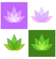 Lotus Symbol Icons Set Yoga and Spa Logo vector image vector image