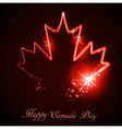Neon maple leaf on the dark vector image vector image