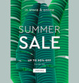 palm leaf summer sale up to 50 percent off web vector image