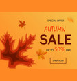 paper cut banner sale for websiteautumn sale vector image