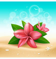plumeria pink flower and leaf on sand vector image