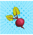 ripe beet on blue background lines dots hand vector image