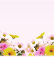 watercolour flowers background vector image vector image