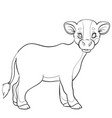 young calf sketch coloring isolated object on vector image vector image