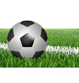 ball on line in field vector image vector image