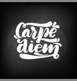 chalkboard blackboard lettering carpe diem vector image vector image