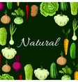 Healthy natural vegetables poster vector image vector image