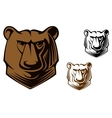 Kodiak bear mascot vector | Price: 1 Credit (USD $1)