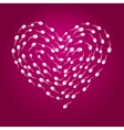 Sperm heart vector image