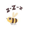 cute bee buzzing funny cartoon insect making zzz vector image vector image