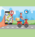 delivery man with package transport service vector image