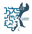 repair of plumbing and water pipes vector image vector image