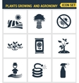 Icons set premium quality of plants growing and vector image