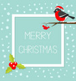 bullfinch winter red feather bird sitting on vector image vector image