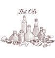 drawing nut oils vector image vector image