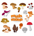 forest summer and autumn cartoon edible mushrooms vector image vector image