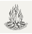 isolated camp fire on white vector image