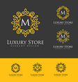 Luxury Logo Letters vector image