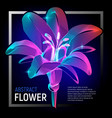natural flower or decorative plant with colorful vector image